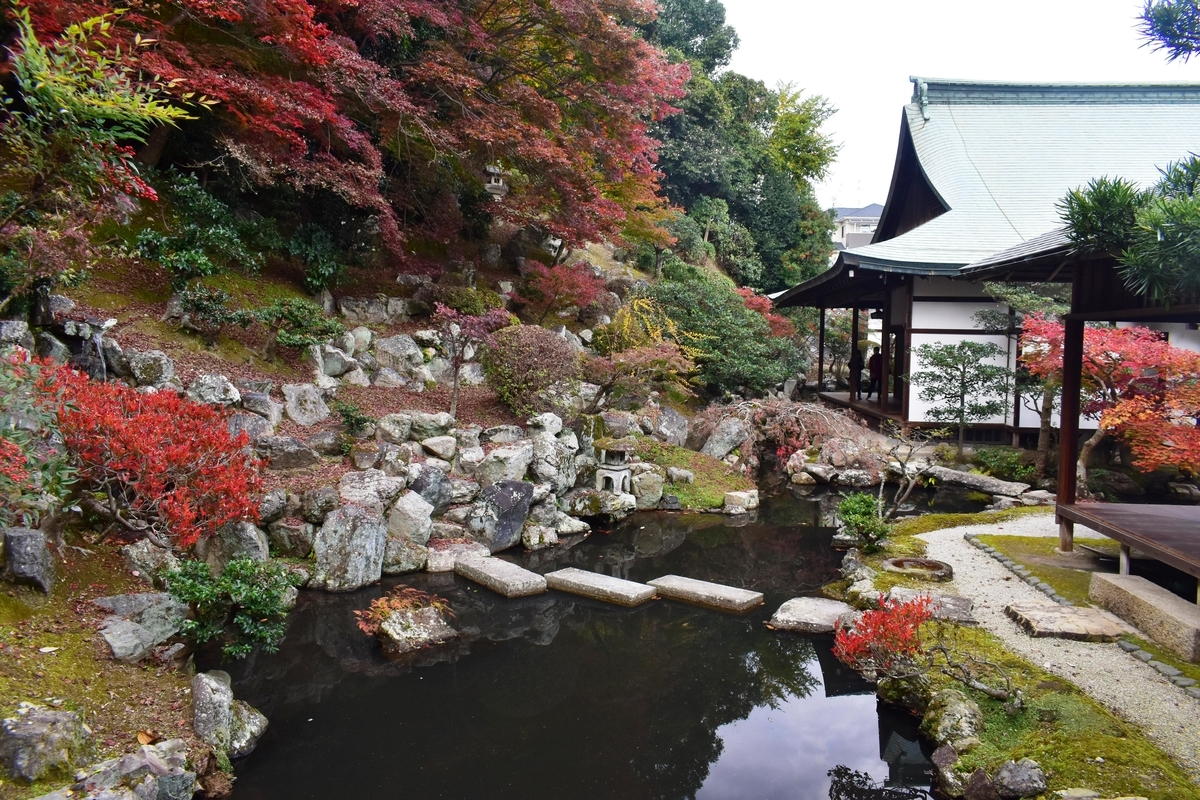 正法寺・書院庭園の紅葉 散りはじめ 2020年11月22日 撮影:MKタクシー