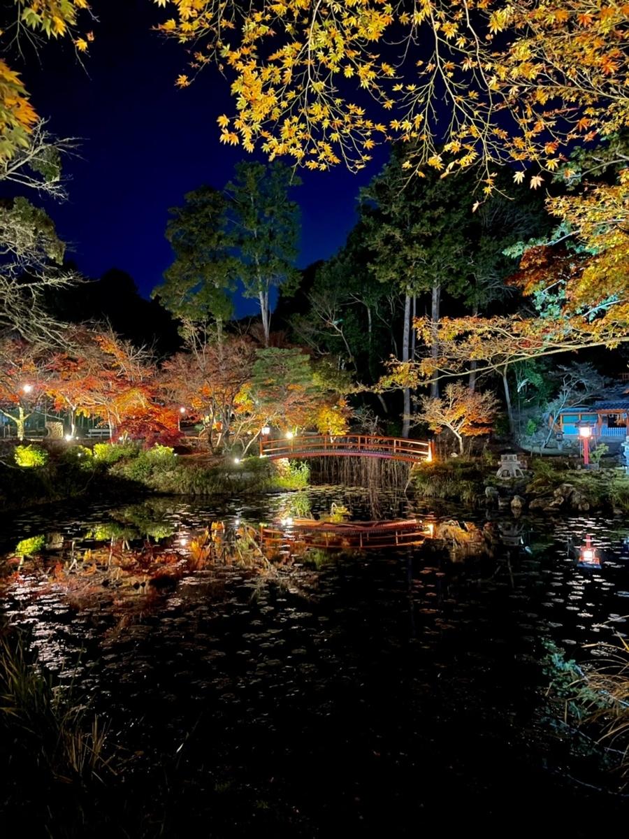 大原野神社・鯉沢池の紅葉ライトアップ 見頃 2020年11月23日 撮影:MKタクシー