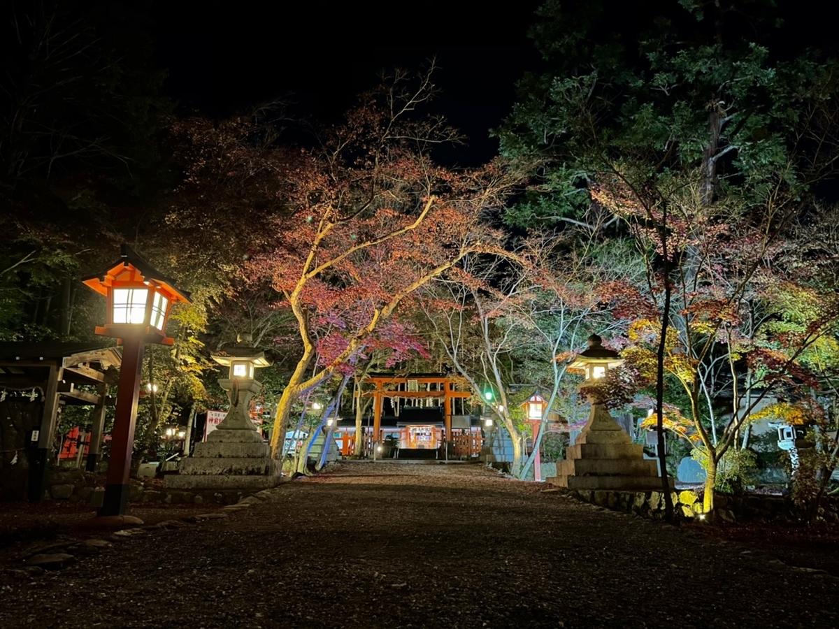 大原野神社の紅葉ライトアップ 見頃 2020年11月23日 撮影:MKタクシー