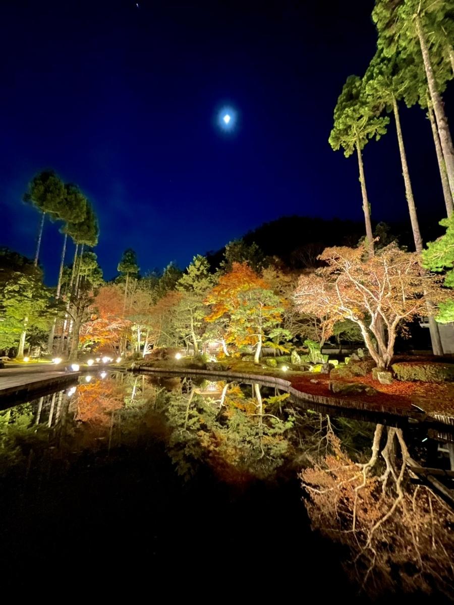 しょうざん日本庭園の紅葉ライトアップ 見頃 2020年11月24日 撮影:MKタクシー
