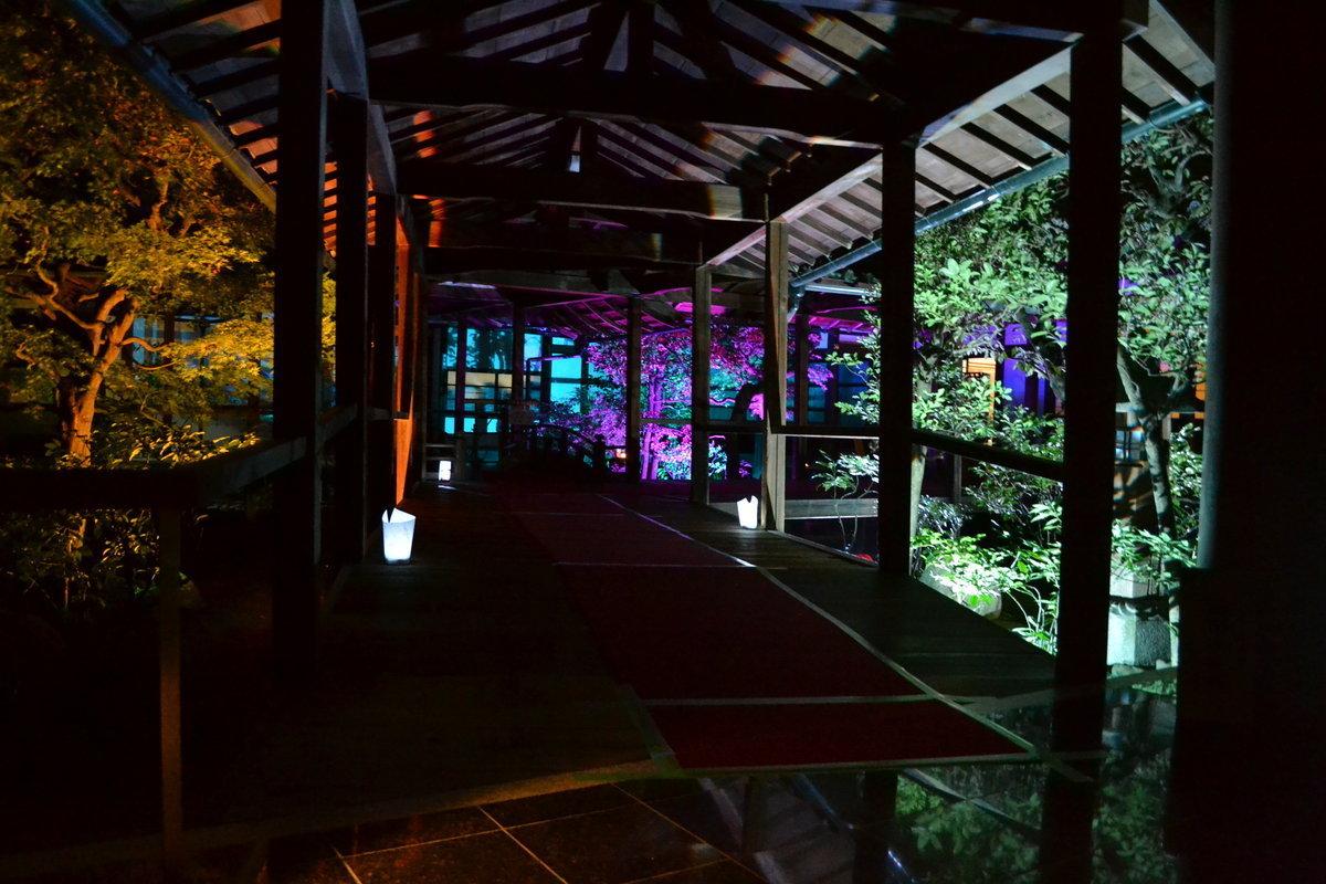 本法寺の紅葉ライトアップ 見頃 2017年11月11日 撮影:MKタクシー