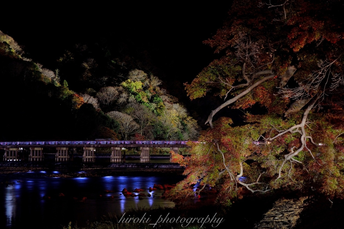渡月橋の紅葉ライトアップ 見頃 2020年11月21日 撮影:MKタクシー