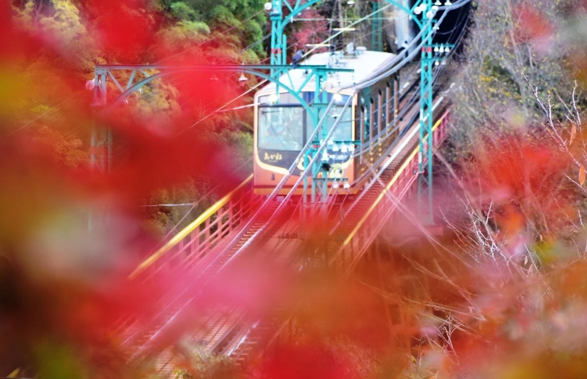 石清水八幡宮参道ケーブル・神応寺奥からの紅葉と「あかね」 見頃 2020年11月29日 撮影:MKタクシー