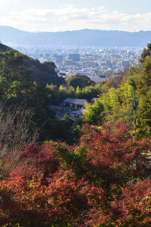 要石からの眺望と紅葉 見頃 2020年12月2日 撮影:MKタクシー