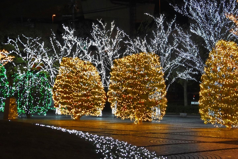 京セラ本社イルミネーション2020 2020年12月3日 撮影:MKタクシー