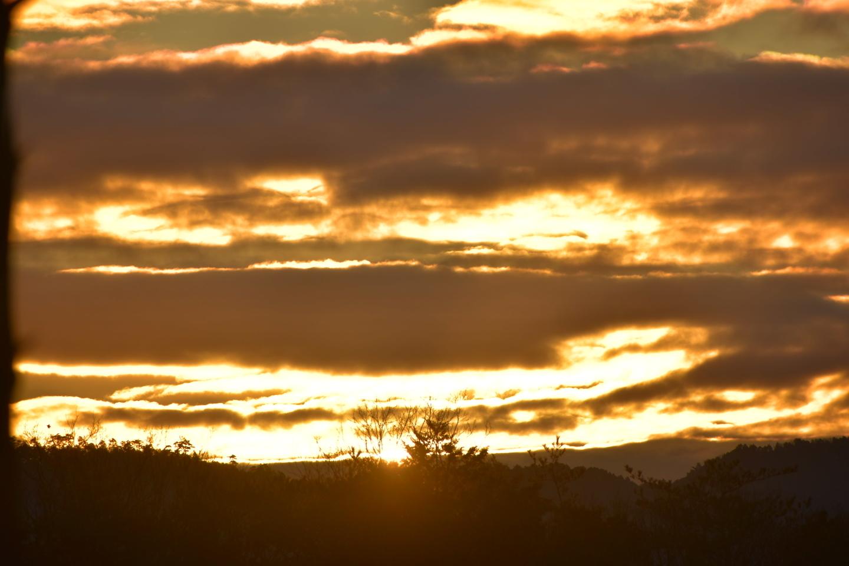 稲荷山 7:19 撮影:MKタクシー
