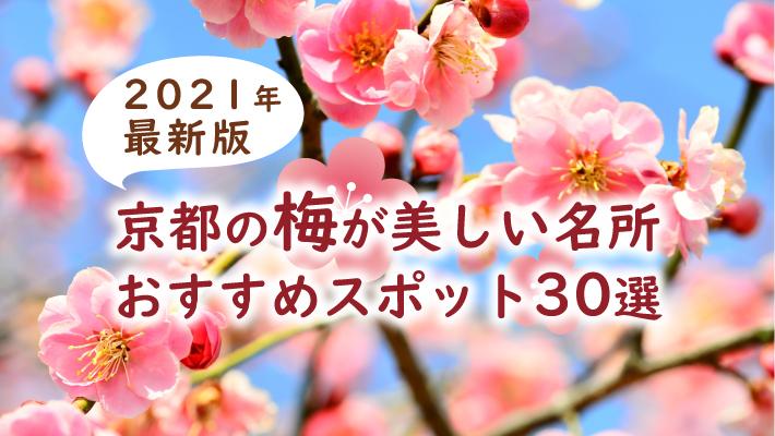 2021 京都 桜