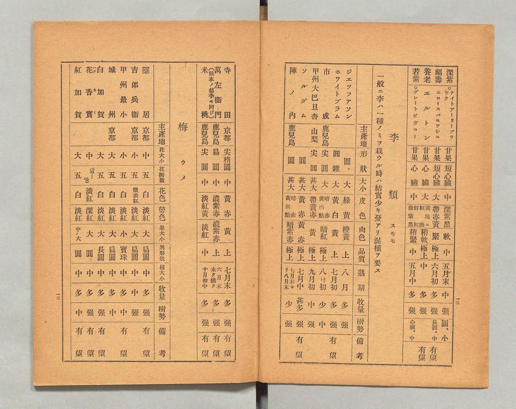 1927年農林省園芸試験場発行「果樹蔬菜品種一覧表」 出展:国立国会デジタル図書館