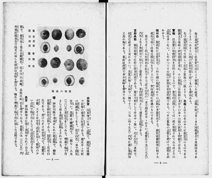 1939年奈良県月瀬青年学校「梅の栽培と加工」 出展:国立国会デジタル図書館