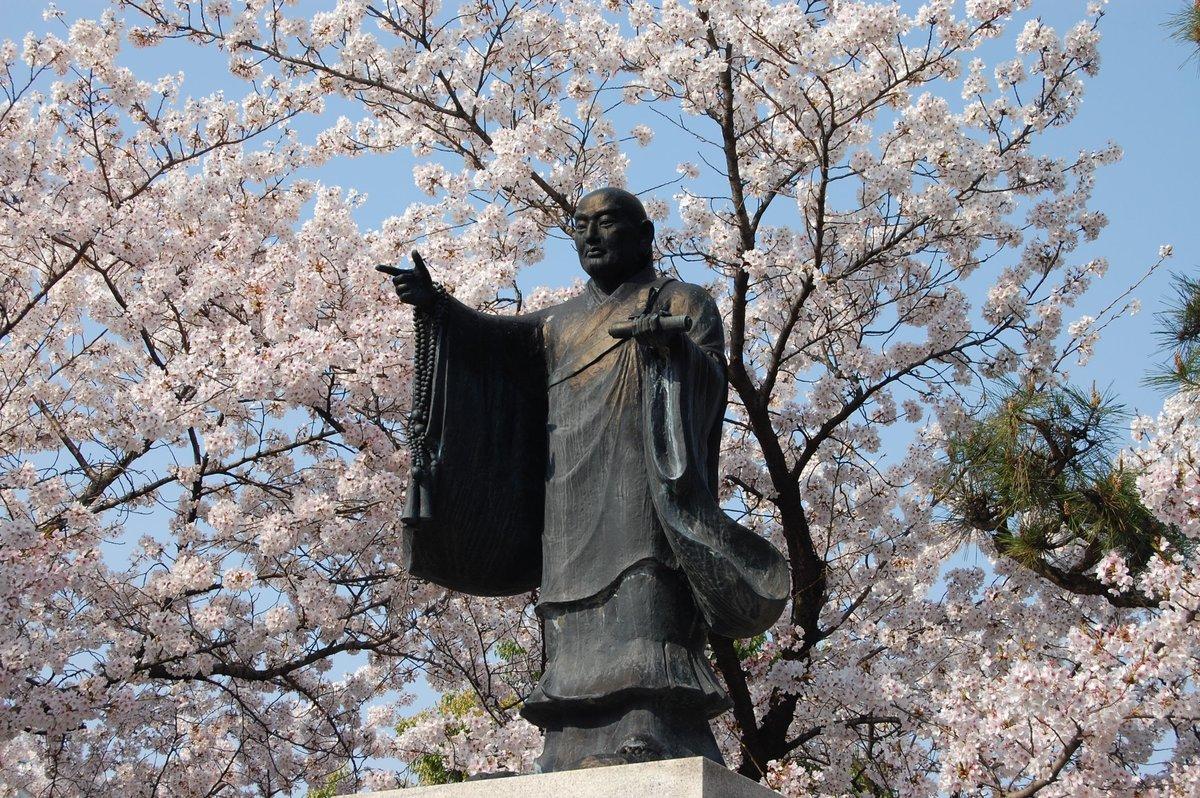 ソメイヨシノと日蓮上人像 見頃 2017年4月6日(平年4月10日相当) 撮影:MKタクシー