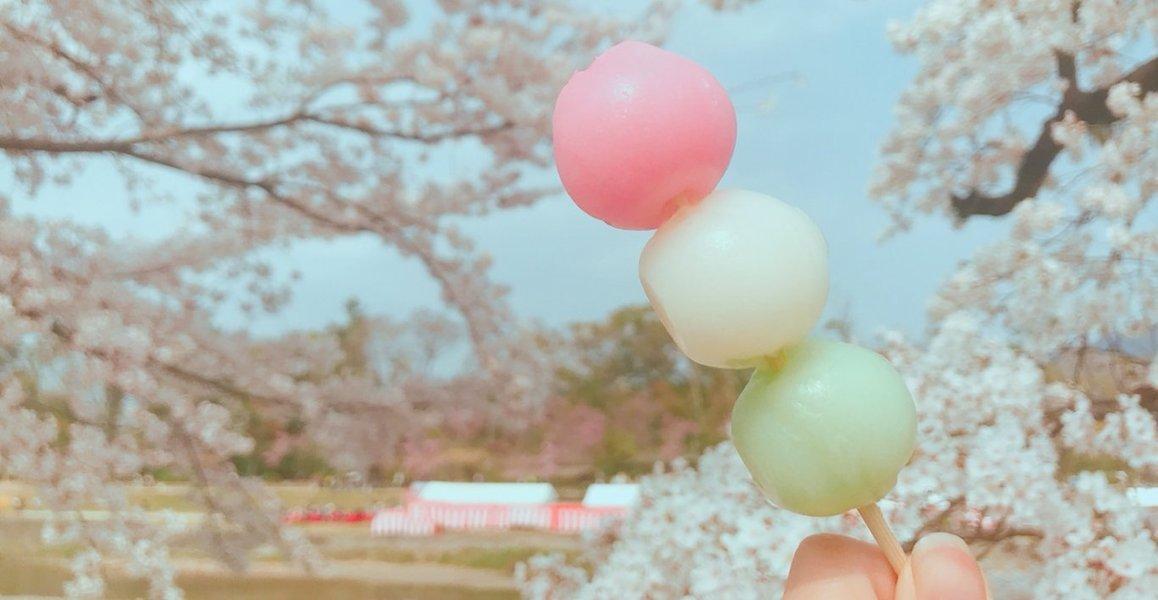北大路橋で三色だんご 2019年4月7日 撮影:MKタクシー
