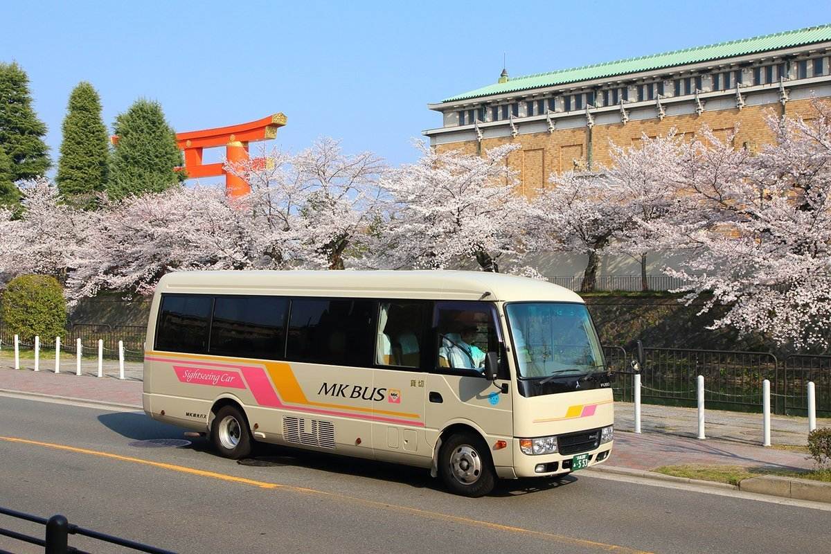 MK観光バスと桜並木 2018年3月28日 撮影:MKタクシー