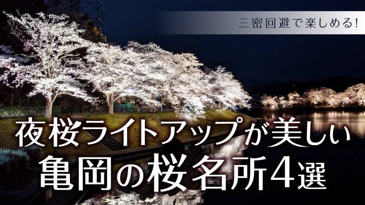 夜桜ライトアップが美しい亀岡の桜名所4選