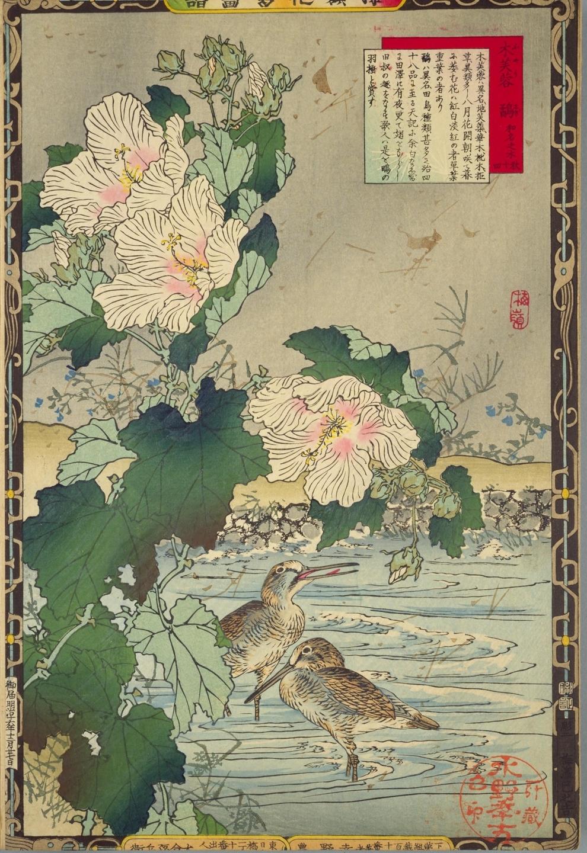 1883年刊行「楳嶺花鳥画譜」国立国会図書館デジタルコレクションより