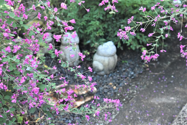 勝念寺の萩とカエル 見頃 2021年9月21日 撮影:MKタクシー