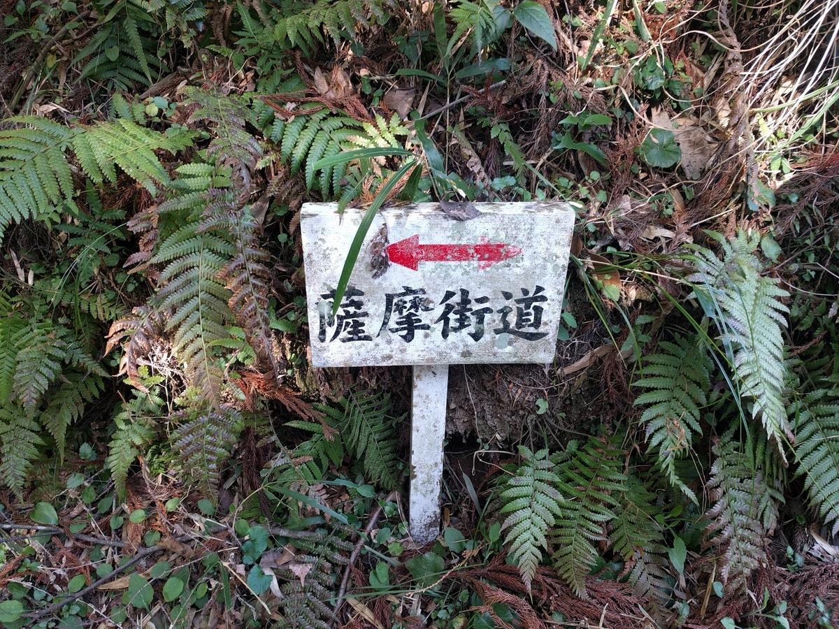 f:id:mkinchan:20210224193051j:plain