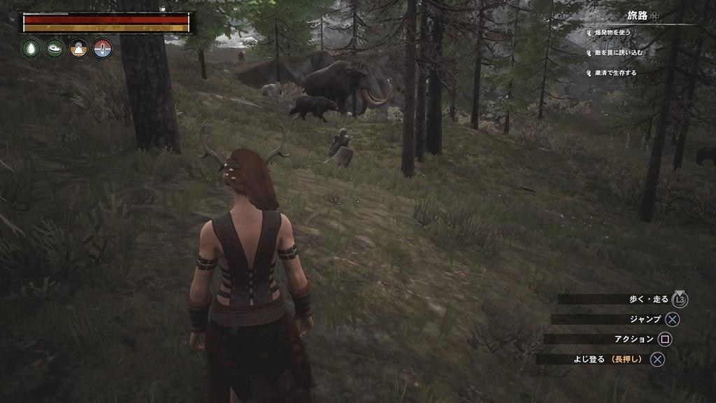 マンモスとクマ