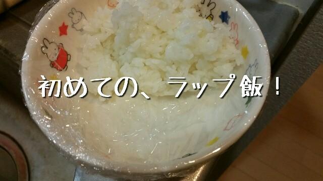 平成28年4月16日夜に食べた際の写真