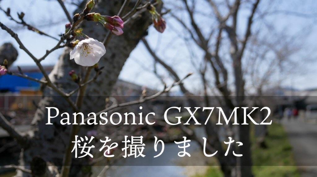 f:id:mm-nankanoffice:20200325194914j:image