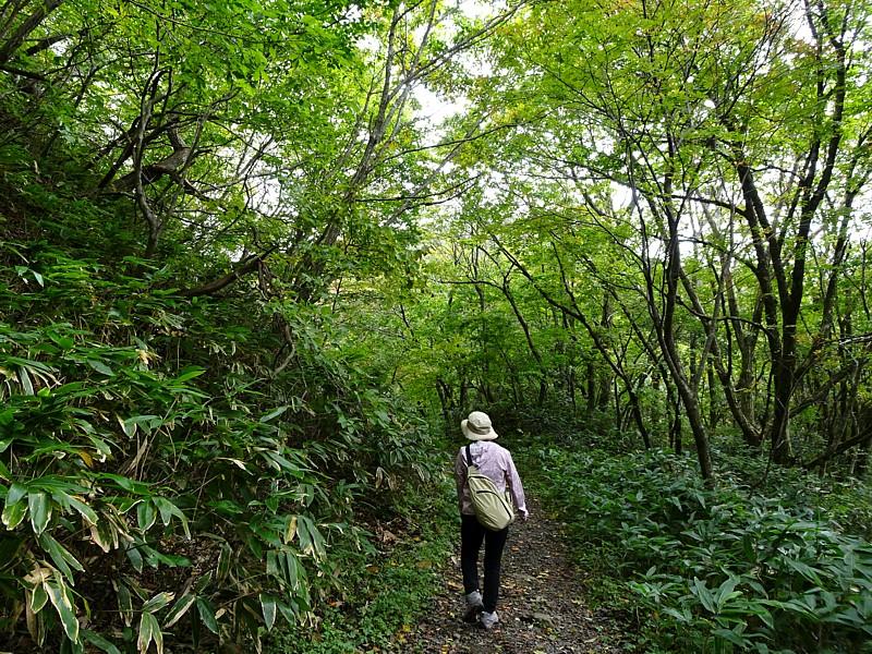2019/10/14 道後山ハイキング