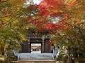 2020/11/14 速谷神社