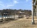 2021/02/23 蒲刈県民の浜