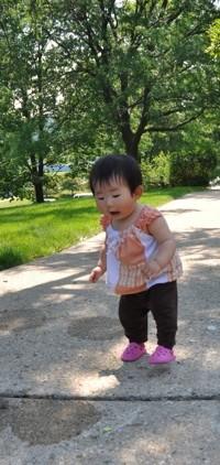 f:id:mmesachi:20100530101452j:image