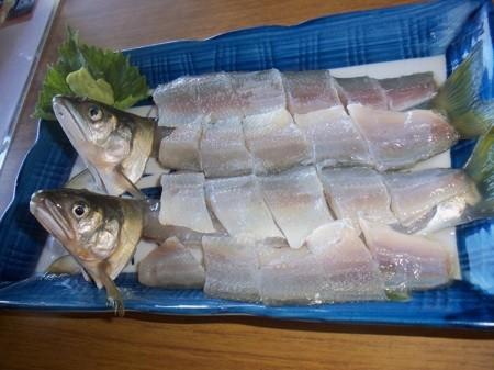 f:id:mmesachi:20110717000359j:image