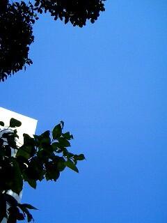 f:id:mmooh:20061009121241j:image