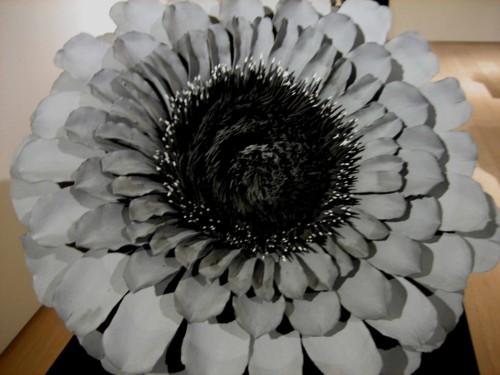 f:id:mmpolo:20100220154624j:image