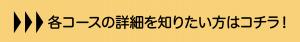 f:id:mmsumeda:20210217155115p:plain