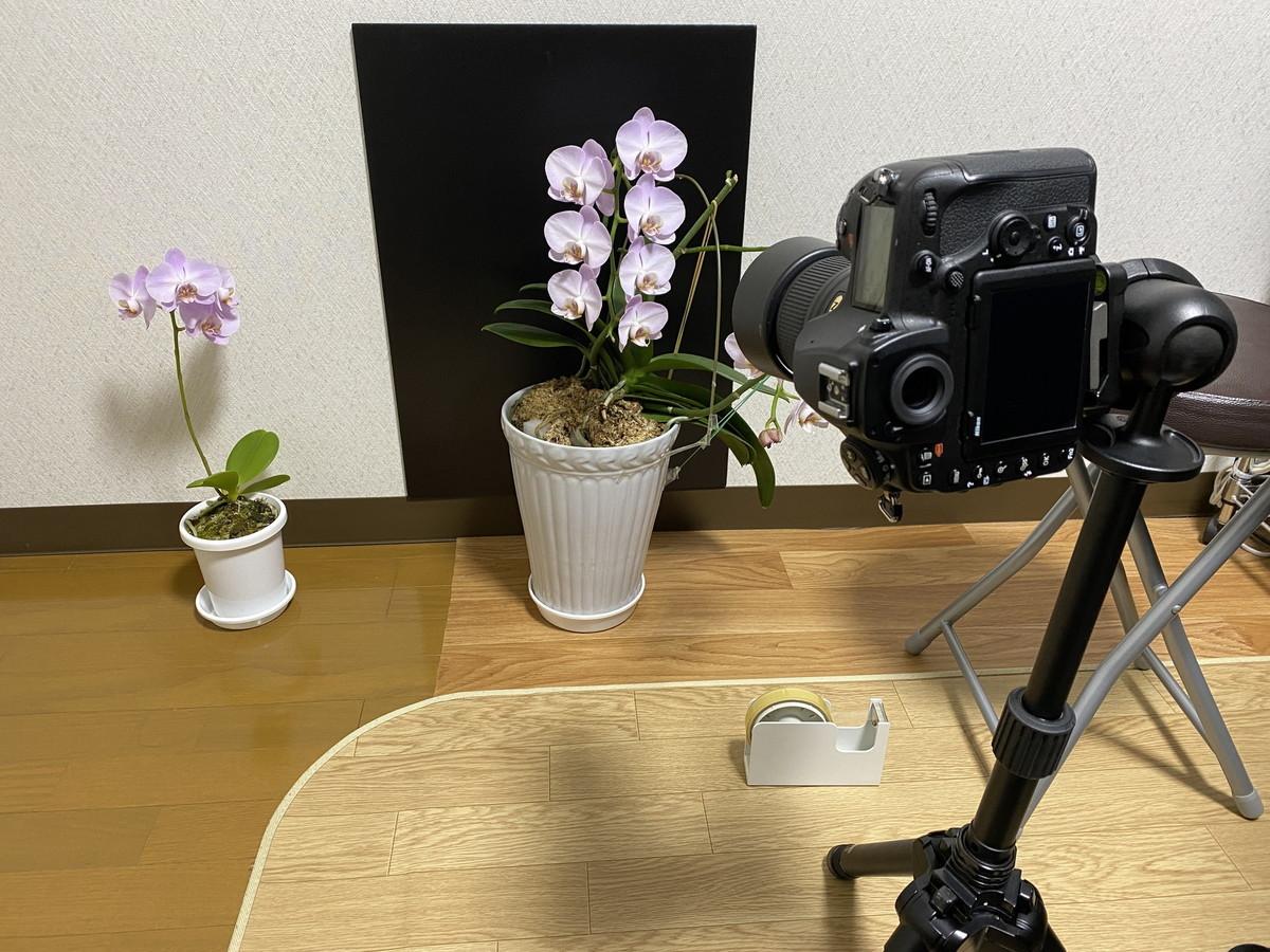 f:id:mnishikawa:20210207165727j:plain