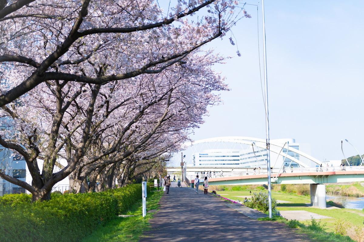 f:id:mnishikawa:20210327084552j:plain