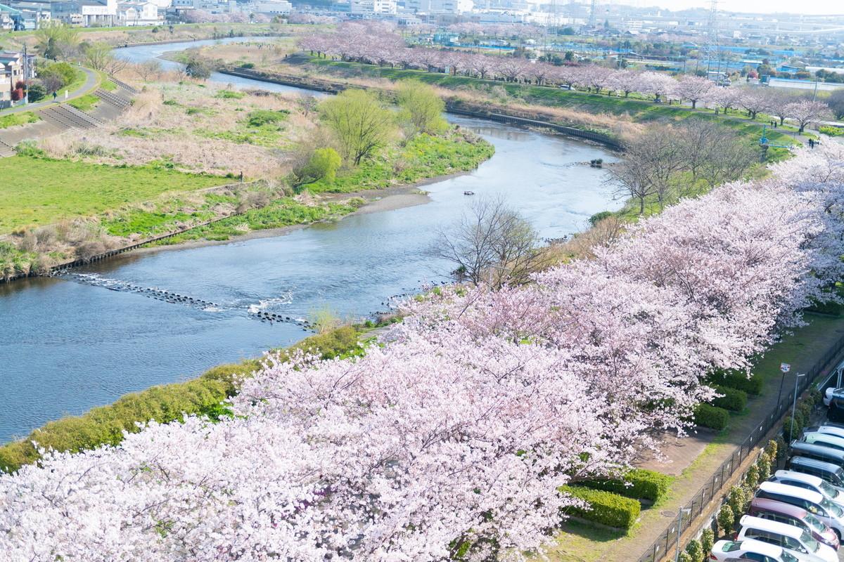 f:id:mnishikawa:20210327085153j:plain