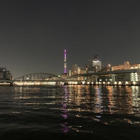 隅田川テラス右岸(柳橋付近) 東京スカイツリー 望む