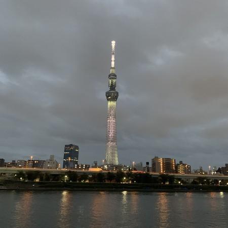 隅田川テラス右岸 東京スカイツリー 望む 桜橋付近