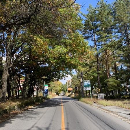 紅葉 中途半端 ロマンティック街道