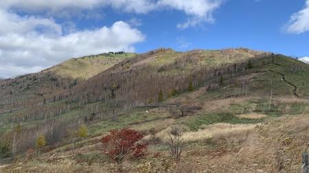 周辺の山 すっかり葉が落ちて 冬を待つ