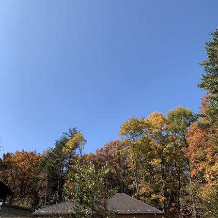 空の青さは気持ちいい