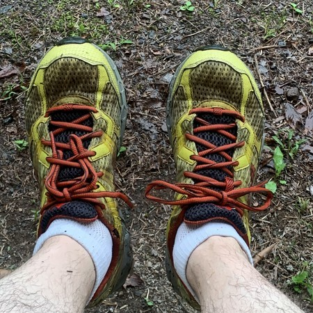 Today's running shoes: Montrail Spotted Yellow
