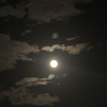 The Mid-Autumn Moon from Ningyocho
