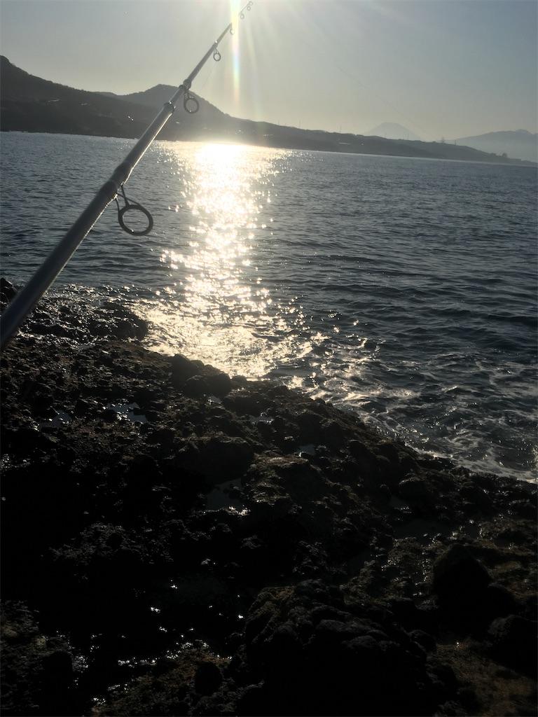 f:id:mns-fishing:20200527232114j:image