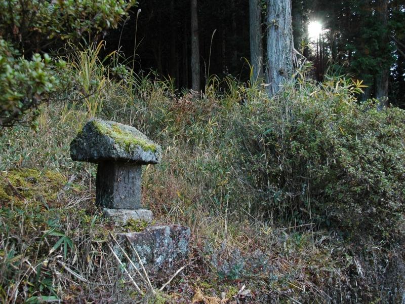 f:id:mnumeda:20101127143010j:image
