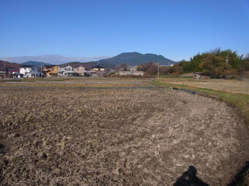 f:id:mnumeda:20111205094110j:image
