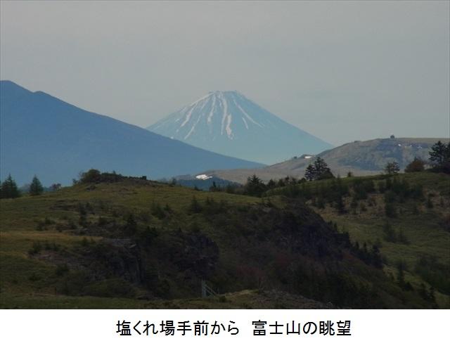 f:id:mnumeda:20150522100317j:image
