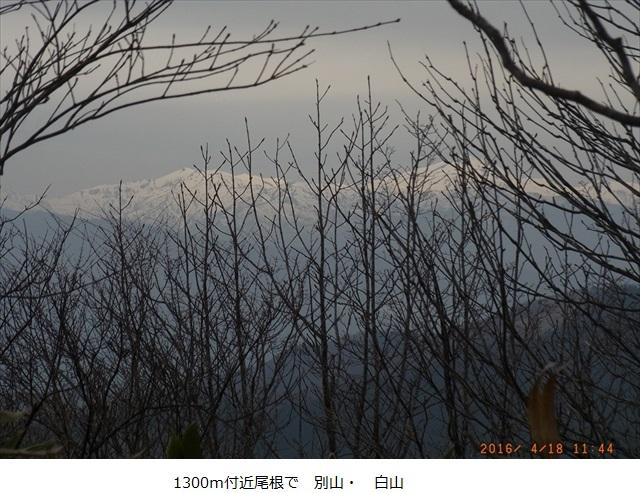 f:id:mnumeda:20160418114412j:image