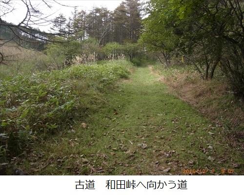 f:id:mnumeda:20161007090721j:image