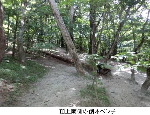 f:id:mnumeda:20170823103217j:image