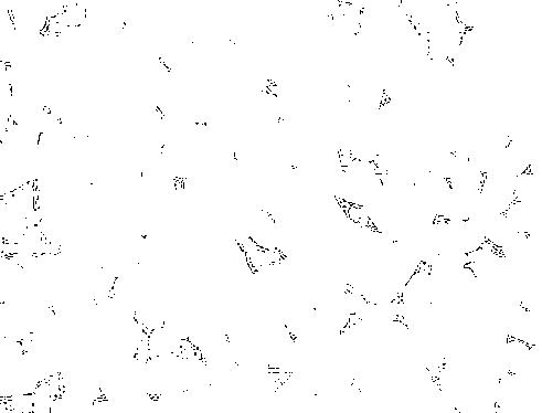 f:id:mo88mo:20170221055719p:plain