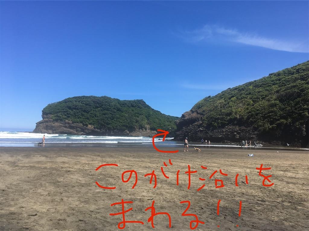 f:id:moanakiwilife:20201008044327j:image